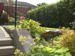 グラスゴーのお庭
